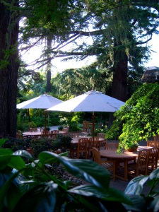 Tall redwoods provide shade for the lush landscaping at Wine and Roses.